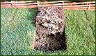 talajlazítás