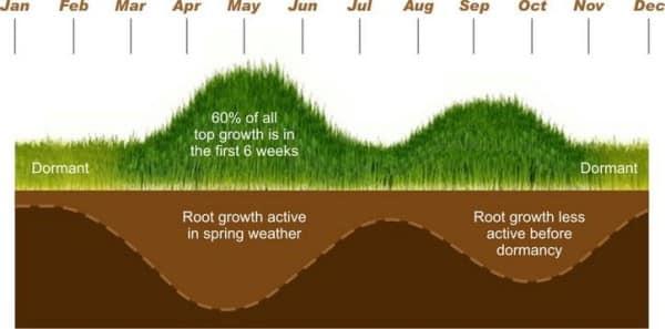 grass growth chart